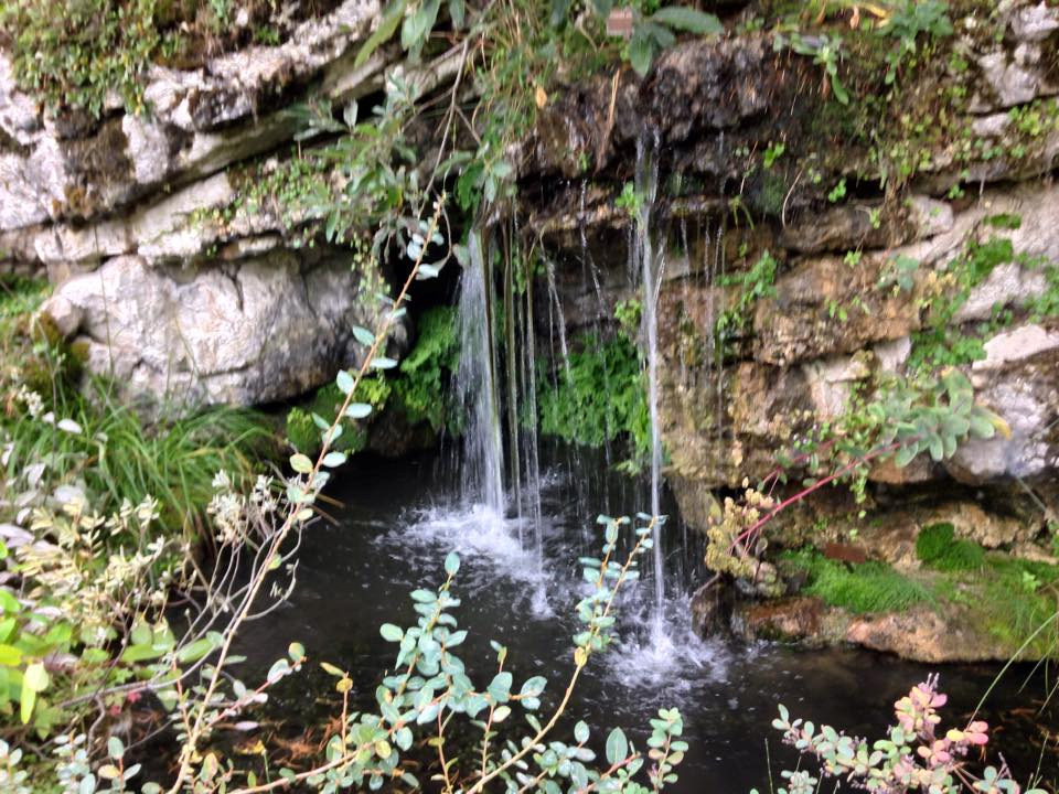 botanical garden geneva2