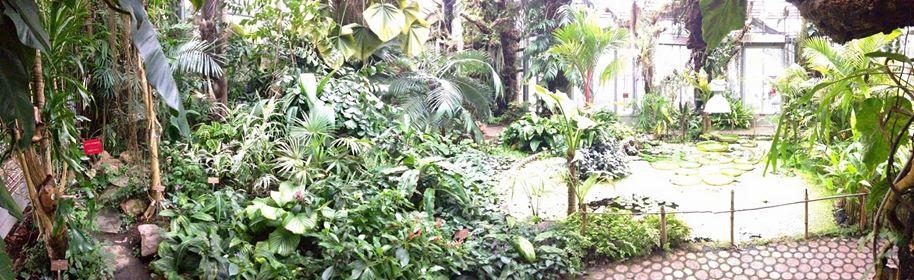 botanical garden magic