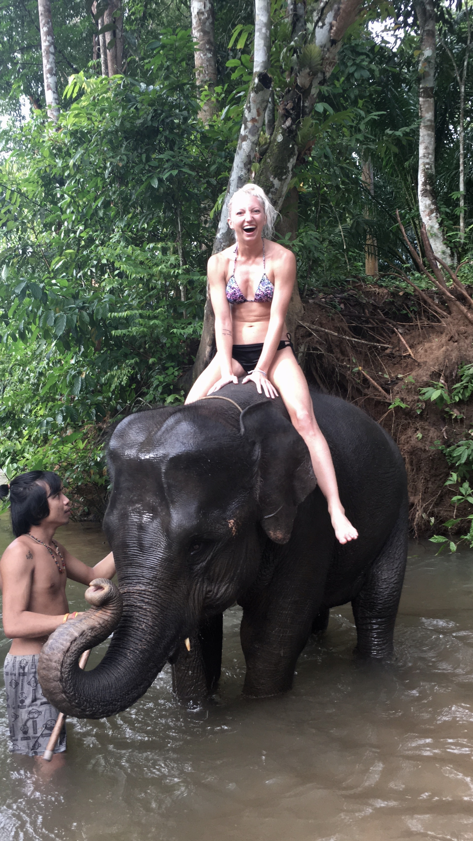 nina-baby-elephant-5